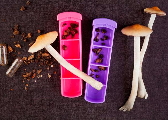 Псилоцибин: научные исследования и подтверждённые факты